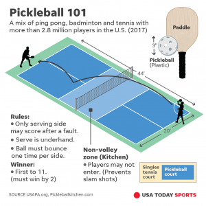 This image has an empty alt attribute; its file name is Pickleball-graphic-1-300x300.png